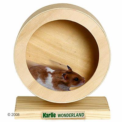Wonderland bogie wheel houtloopwiel     Ø 15 cm van kantoor artikelen tip.
