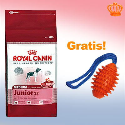 15 kg royal canin size   boomer aqua football gratis     energy 4300   aqua ball
