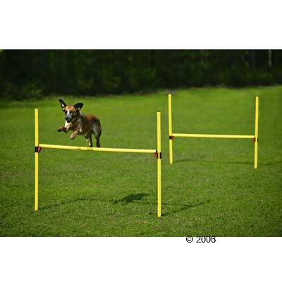 agility hindernissen set     2 hoogtesprongen