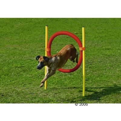 agility ringen     1 stuk