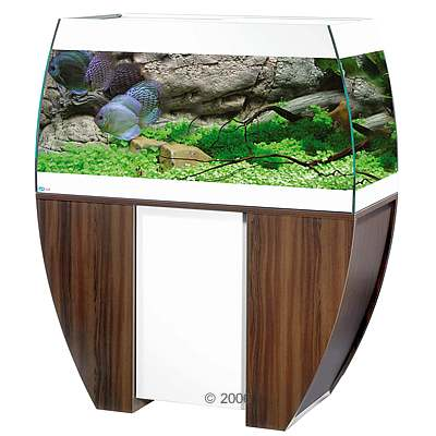 mp scubabay aquarium combinatie     wengé / wit