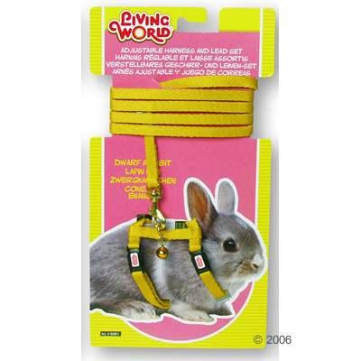 hagen tuigje en lijnenset voor dwergkonijnen     geel