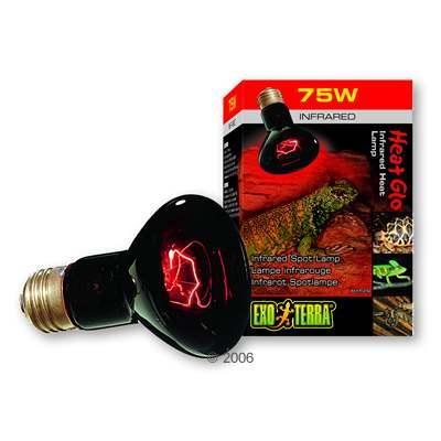 hagen exo terra infrarood warmtelamp heat glo     100 w