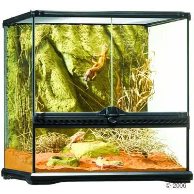 hagen exo terra glas terrarium met achterwand     maat: l 30 x b 30 x h 30 cm