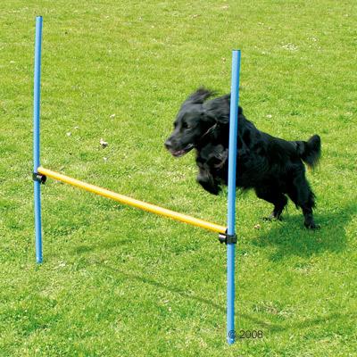 agility fun & sport hoogtesprong     1 hoogtesprong