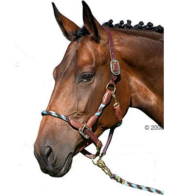 Usg set: leidsel  & lederhalster     halster set bruin, pony van kantoor artikelen tip.