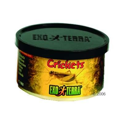 hagen exo terra krekels reptielenvoer     34 g