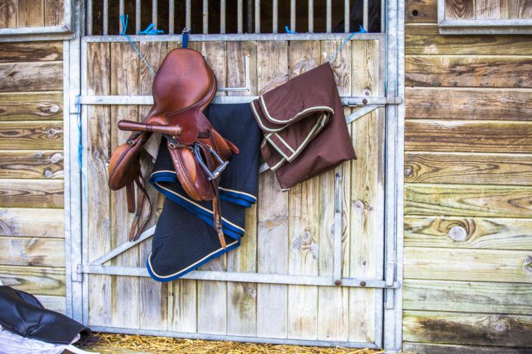 Paardenaccessoires: de uitrusting voor het eigen paard