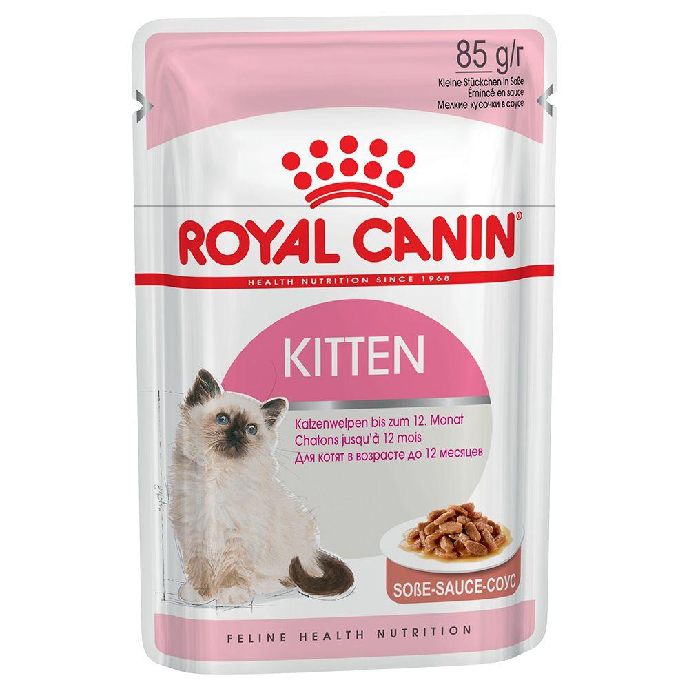 Royal Canin Kitten in Saus
