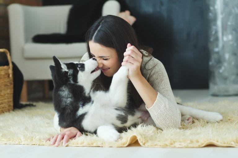 Houdt mijn hond van mij