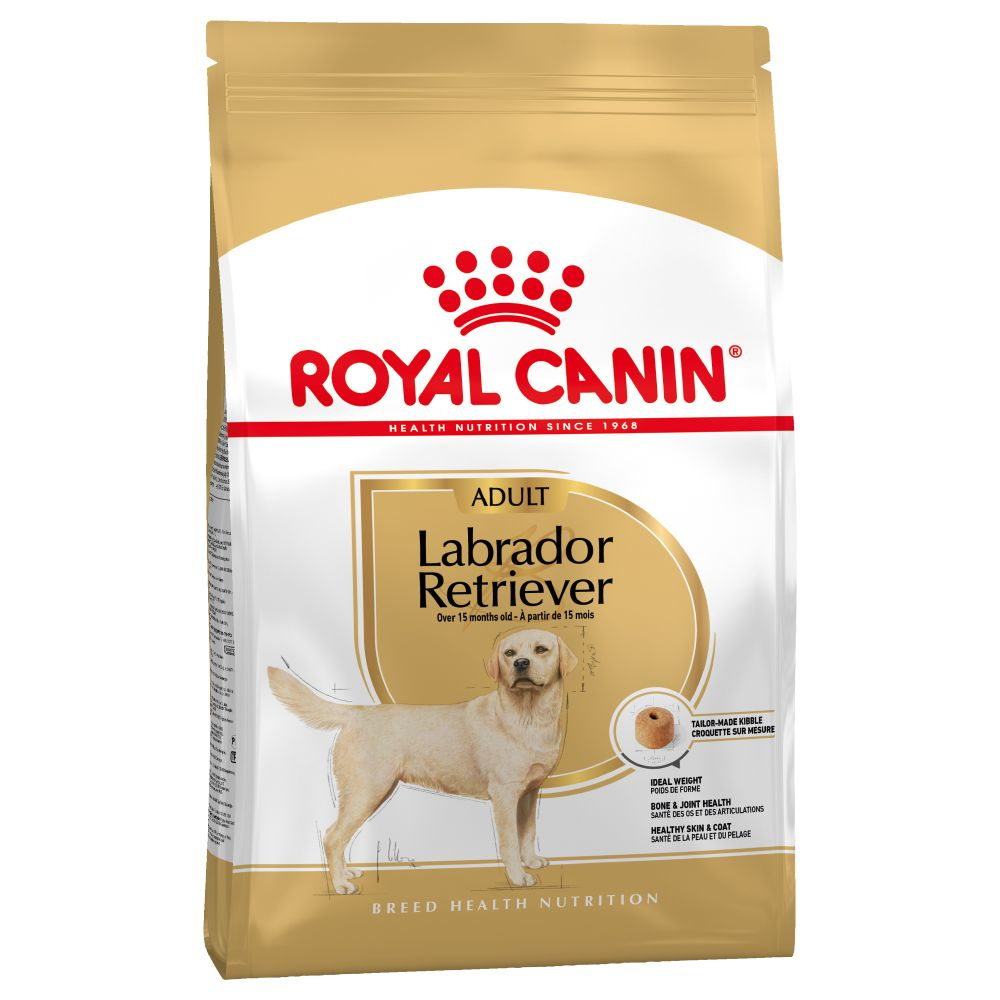 de juiste voeding voor je labrador retriever