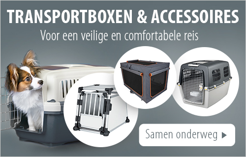 transportboxen_hond
