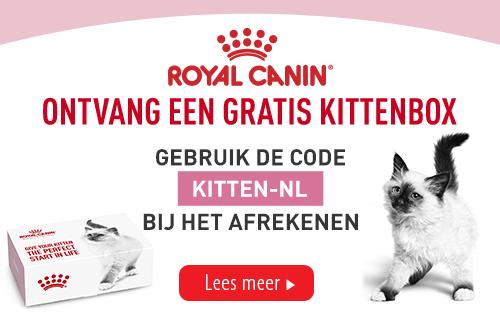 rc_gratis_kittenbox