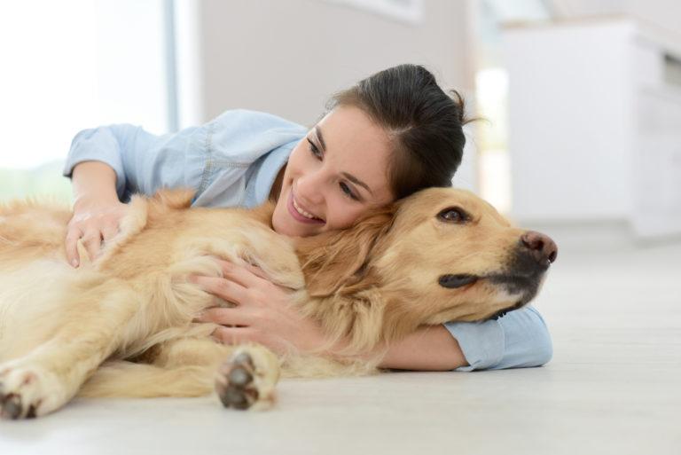 Spijsverteringproblemen bij honden