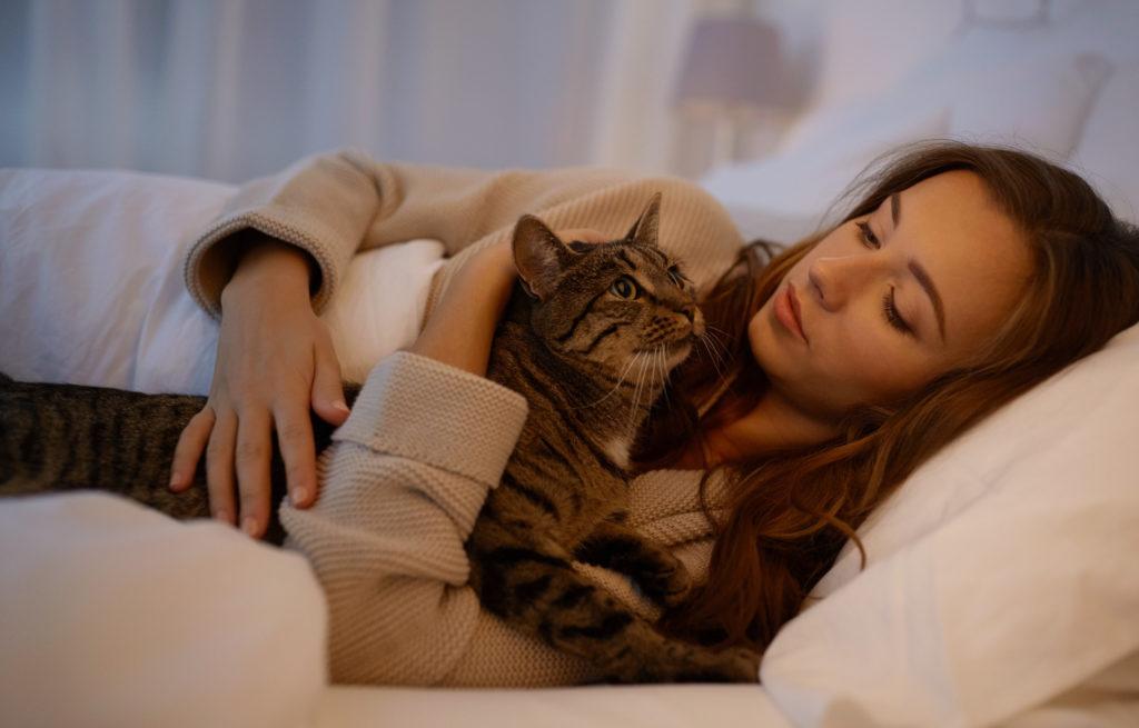 kat bij baasje op bed