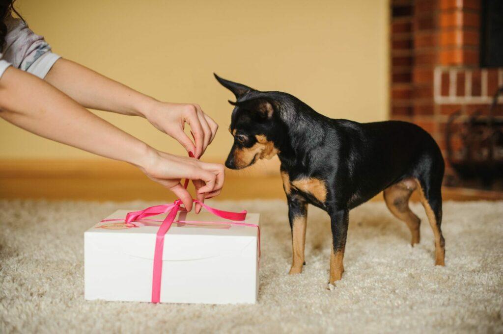 Hond Valentijnscadeau