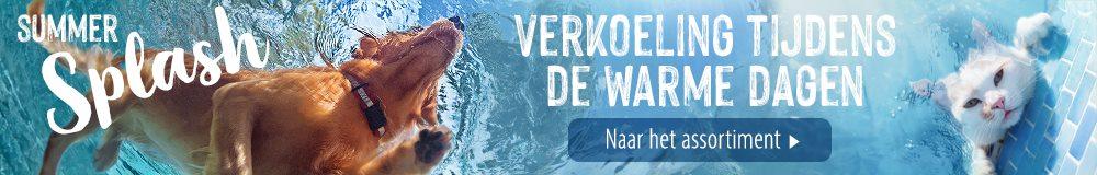 SummerSplash NL21 A1