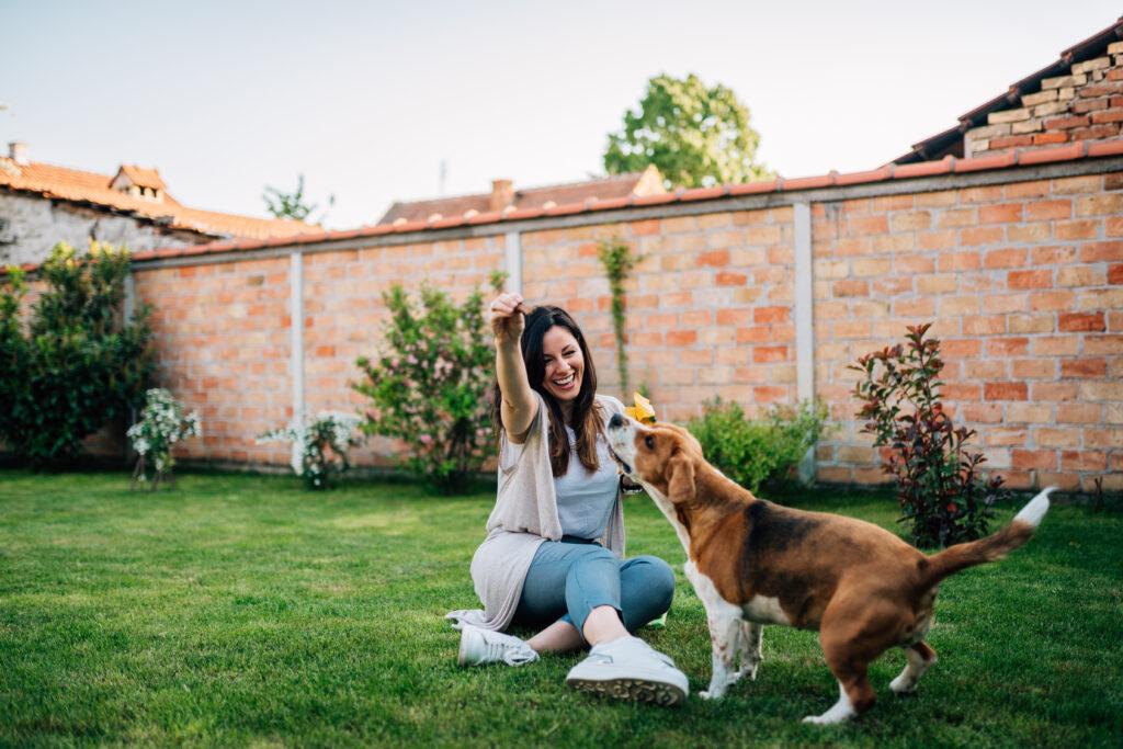 hond speelt met vrouw