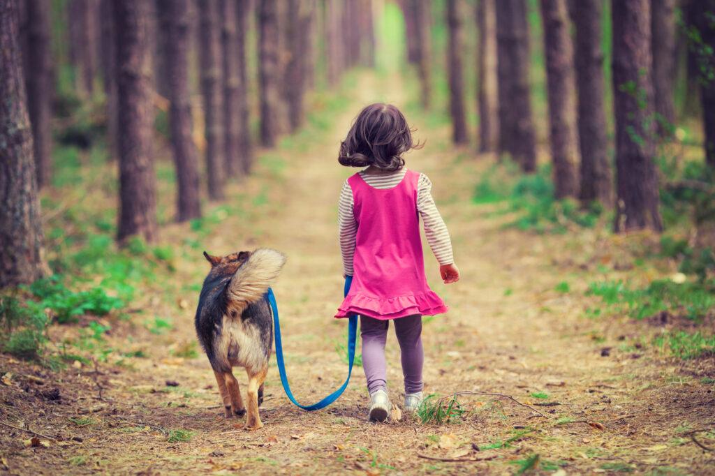 hond met meisje in bos