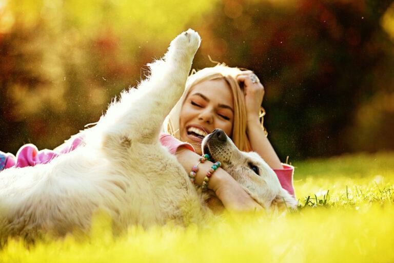 hond leven beter