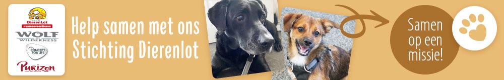 NL PL Charity Dog AB1