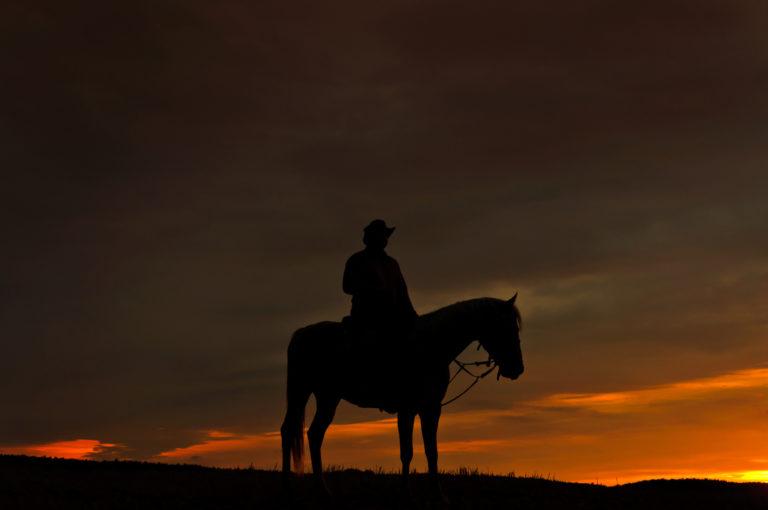 Ruiter met paard in het donker
